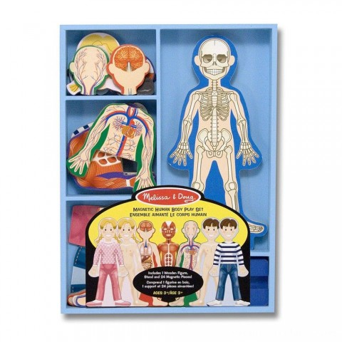 Melissa & Doug Magnetic Human Body Anatomy Play Set and Storage Tray - 24pc Free Shipping